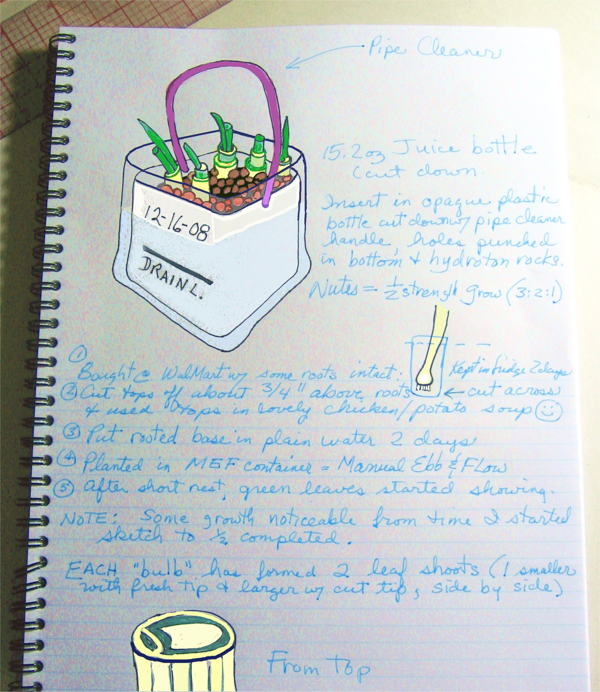NotebookOnion2