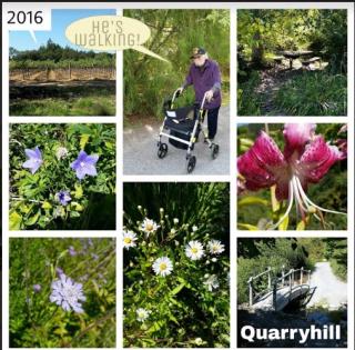 QuarryhillOne